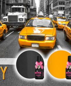 Diva New York City Collection